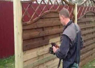Чем красить деревянный забор